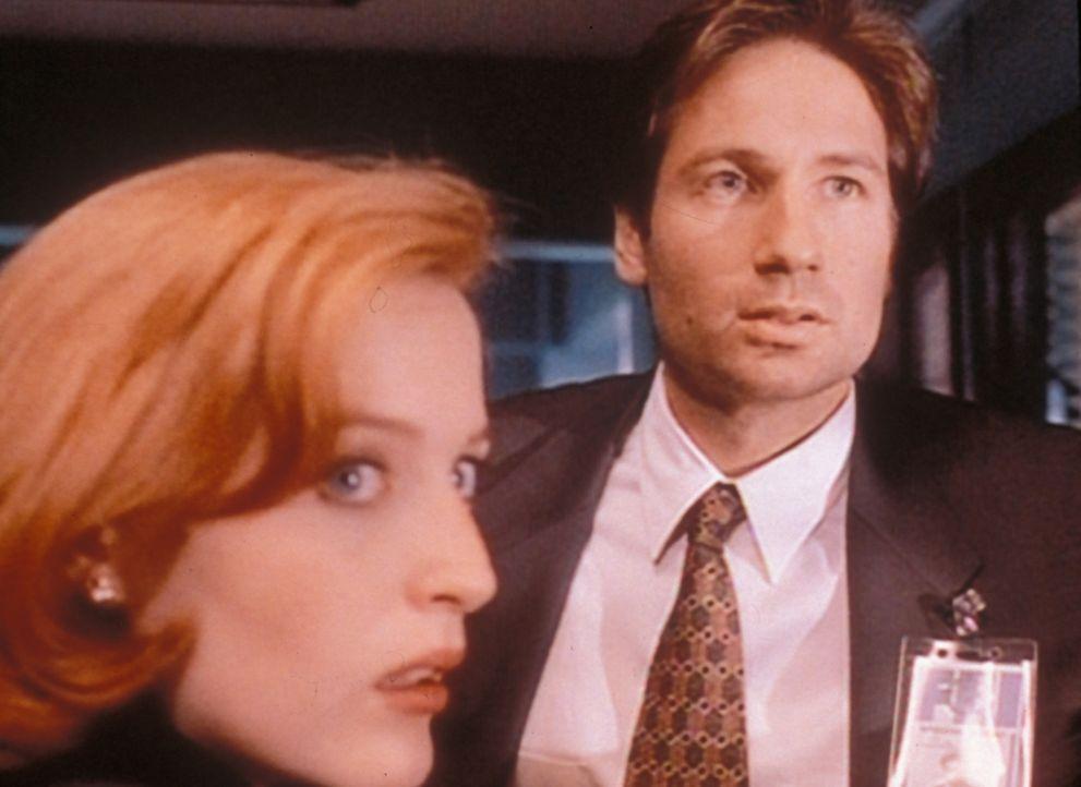 Scully (Gillian Anderson, l.) und Mulder (David Duchovny, r.) müssen feststellen, dass der Entführer eines 15-jährigen Mädchens vor langer Zeit scho... - Bildquelle: TM +   Twentieth Century Fox Film Corporation. All Rights Reserved.