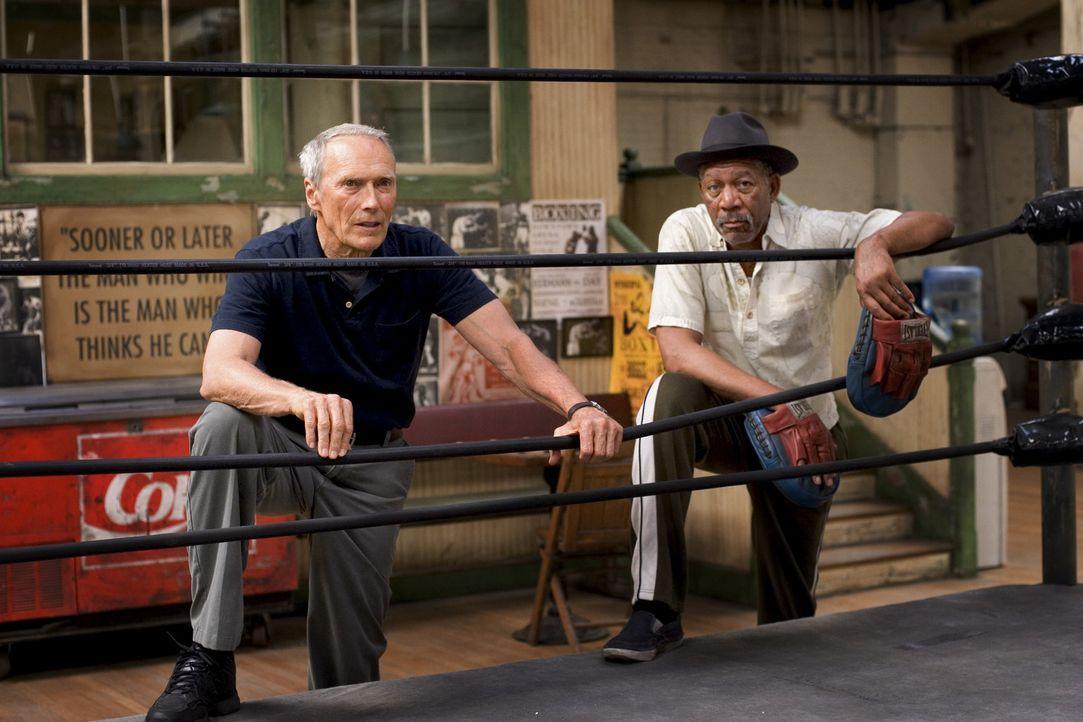 Zunächst erkennt nur Scrap (Morgan Freeman, r.), Hausmeister, Ex-Boxer und Frankies einziger Freund, Maggies Durchsetzungswillen. Heimlich unterstüt... - Bildquelle: Epsilon Motion Pictures