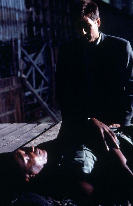 Augustus Cole (Tony Todd, liegend), der Hauptverdächtige von Mulder (David Duchovny,hinten), wird erschossen, bevor er sein großes Geheimnis preisge... - Bildquelle: TM +   Twentieth Century Fox Film Corporation. All Rights Reserved.