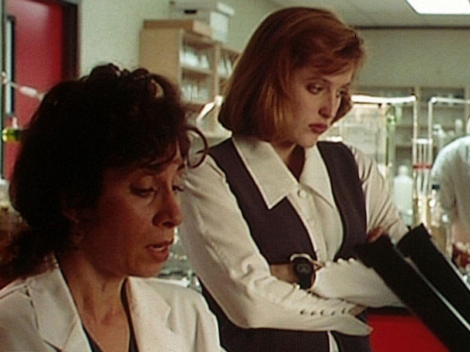 Dr. Carpenter (Anne DeSalvo, l.) von der Mikrobiologischen Fakultät der Universität in Georgetown erklärt Scully (Gillian Anderson, r.), dass die Ba... - Bildquelle: TM +   Twentieth Century Fox Film Corporation. All Rights Reserved.