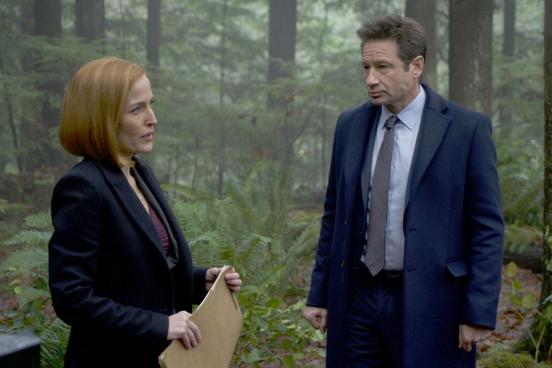 Scully (Gillian Anderson, l.) kann zunächst nicht glauben, dass an dem Tod eine Jungen wirklich Hexen schuld sein sollen, doch Mulder (David Duchovn... - Bildquelle: Shane Harvey 2018 Fox and its related entities. All rights reserved. / Shane Harvey