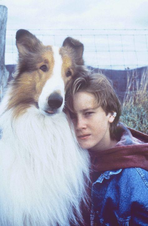 Werden zu einem unzertrennlichen Paar: Matt (Tom Guiry) und die Hündin Lassie ... - Bildquelle: Paramount Pictures