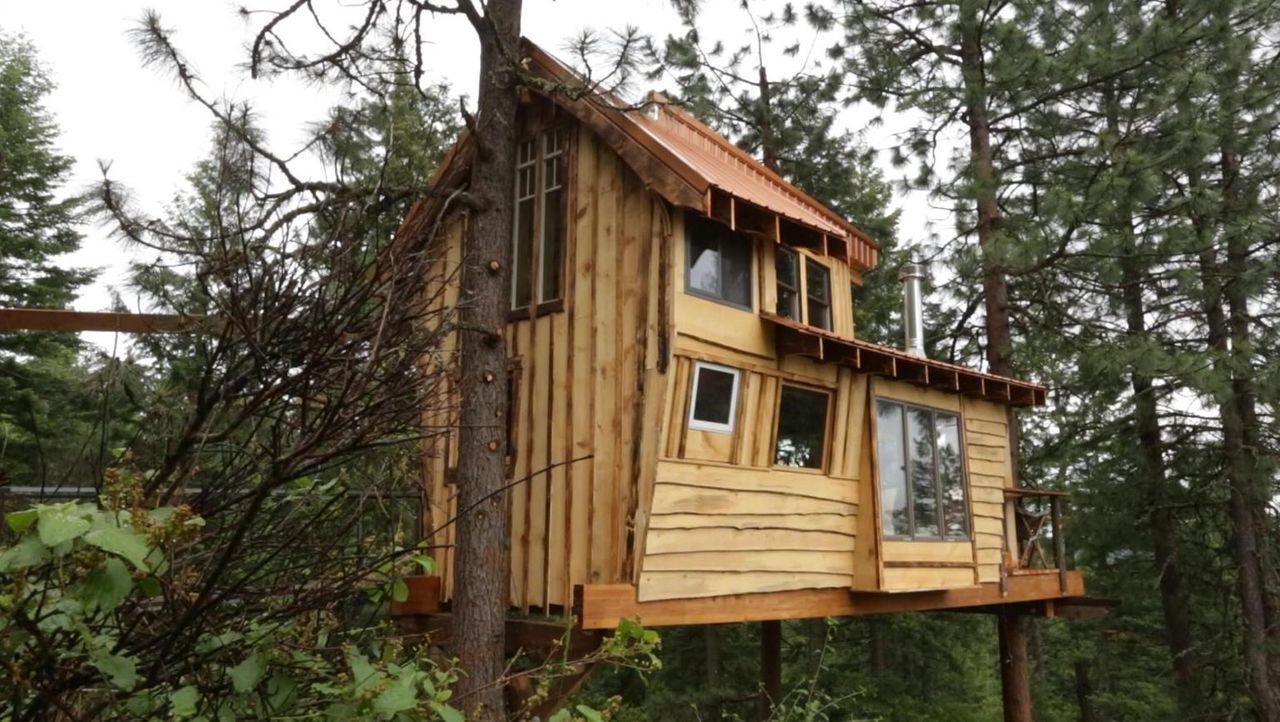 Für Andrew und Lynn reisen die Baumhaus-Experten wieder einmal durchs Land und bauen unter vollem Körpereinsatz ein atemberaubendes Baumhaus für ein... - Bildquelle: 2016,DIY Network/Scripps Networks, LLC. All Rights Reserved