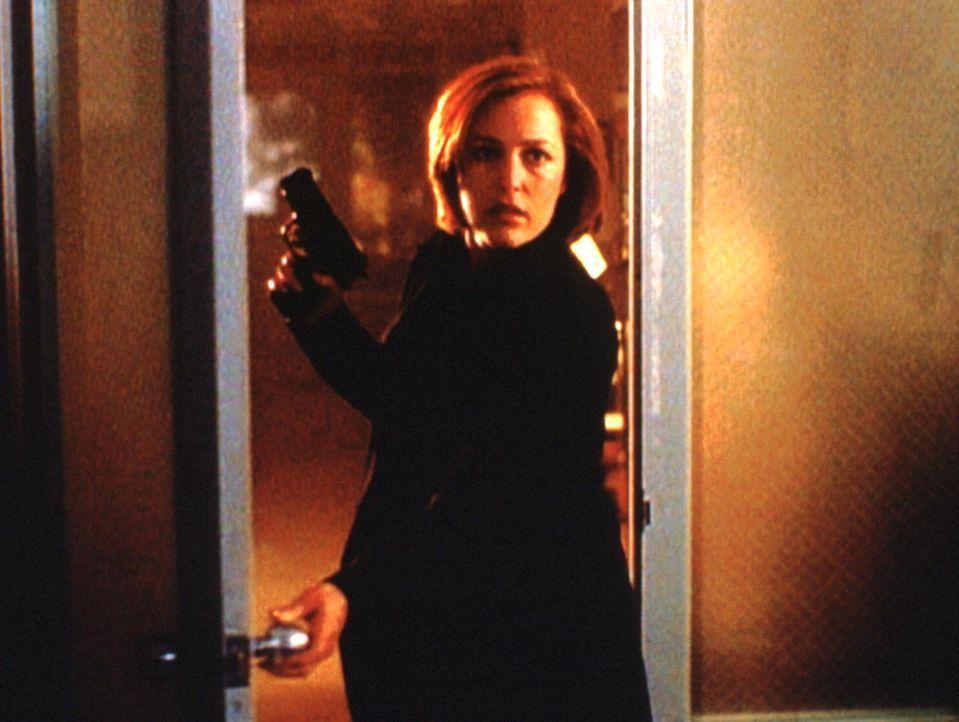 Scully (Gillian Anderson) stößt in einer Tierarztpraxis auf ein weiteres Opfer des asiatischen Hundes Wanshang Dhole. - Bildquelle: TM +   2000 Twentieth Century Fox Film Corporation. All Rights Reserved.