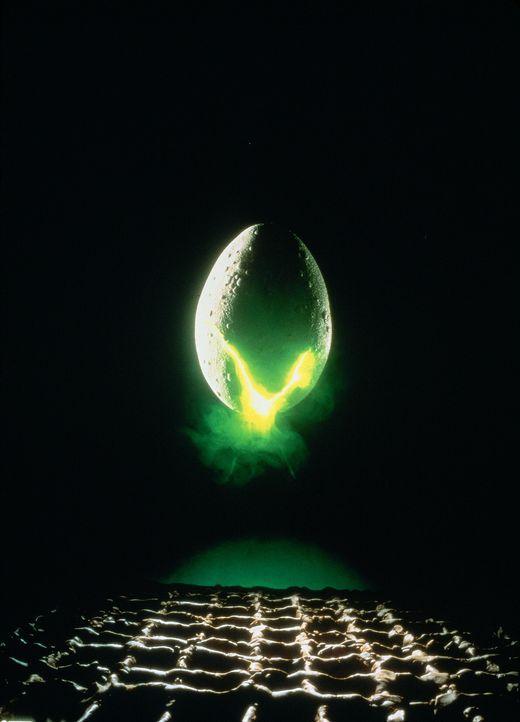 Alien - Das unheimliche Wesen aus einer fremden Welt ... - Bildquelle: 20th Century Fox of Germany
