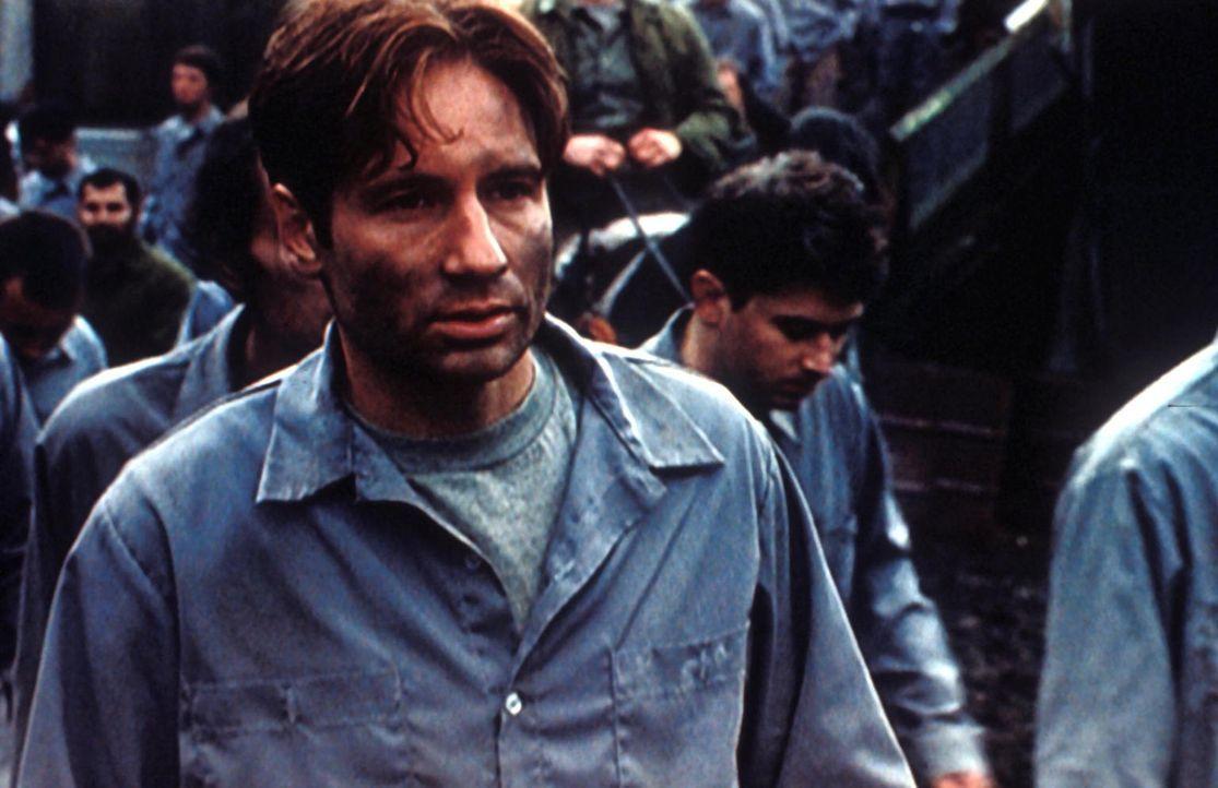 Mulder (David Duchovny) ist in ein russisches Arbeitslager geraten, dessen Insassen außerirdischen Viren ausgesetzt werden. - Bildquelle: TM +   Twentieth Century Fox Film Corporation. All Rights Reserved.