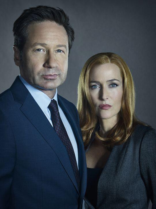 (11. Staffel) - Müssen erkennen, dass sie nicht die einzigen sind, die nach ihrem Sohn suchen: Mulder (David Duchovny, l.) und Scully (Gillian Ander... - Bildquelle: 2018 Fox and its related entities.  All rights reserved.