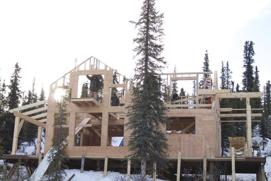 Das neue Haus der Familie White soll am Paxson Lake stehen - von Grizzly Bären, Wölfen, Elchen und anderen Tieren umgeben. Ob das gut geht? - Bildquelle: 2015, DIY Network/Scripps Networks, LLC. All Rights Reserved.