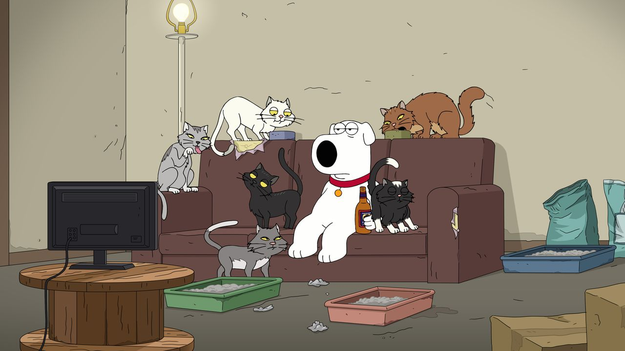 Brian Griffin - Bildquelle: 2018-2019 Fox and its related entities.  All rights reserved.