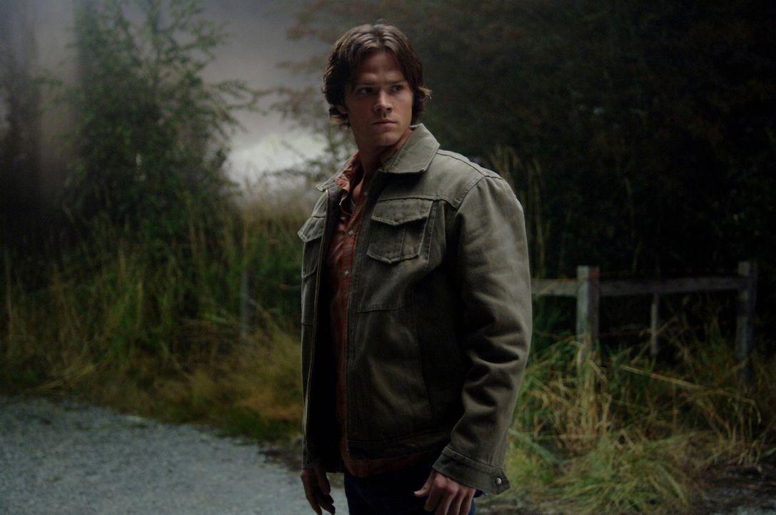 Sam (Jared Padalecki) und Dean untersuchen eine Kleinstadt, die von einer Reihe seltsamer Morde geplagt wird ... - Bildquelle: Warner Bros. Television