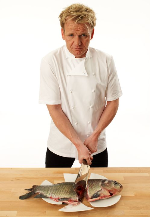 Setzt all sein Wissen und seine Erfahrung ein, um schlecht laufende Restaurants aus der Krise zu retten: Sternekoch Gordon Ramsay - Bildquelle: George Holz Fox Broadcasting.  All rights reserved.