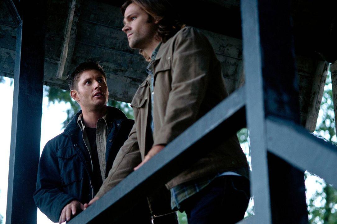 Als Sam (Jared Padalecki, r.) und Dean (Jensen Ackles, l.) erkennen, dass Kevin ihre Hilfe braucht - es könnte bereits zu spät sein ... - Bildquelle: Warner Bros. Television