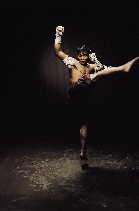 Obwohl Ting (Tony Jaa) bisher vermieden hat, seine Kampfkunstfähigkeiten in ihrer letzten, tödlichen Konsequenz einzusetzen, ist eine Auseinanderset... - Bildquelle: e-m-s new media AG