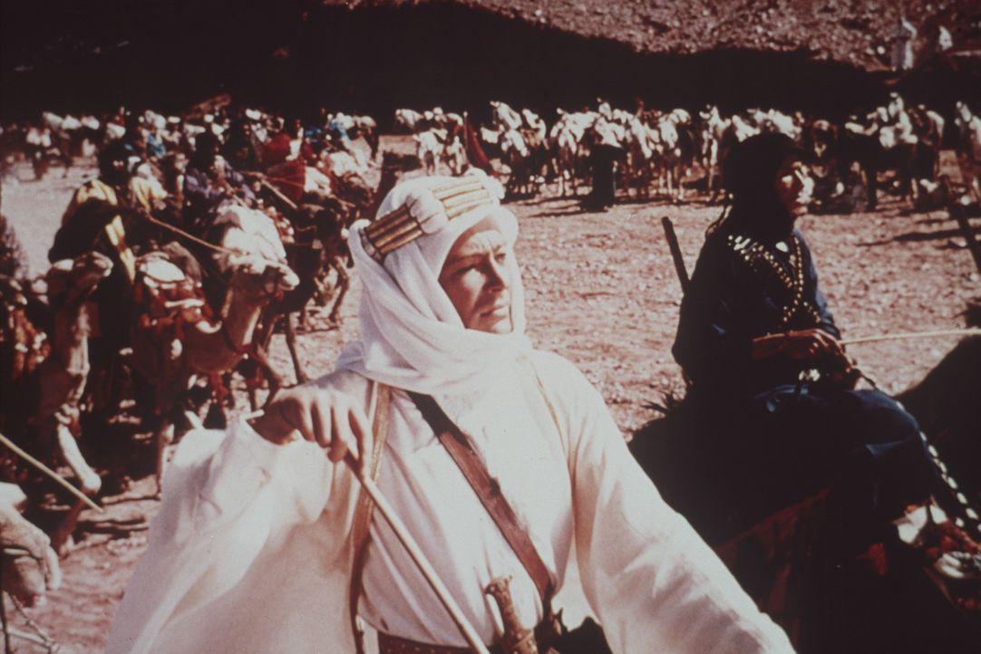 Unter der Führung von Lawrence (Peter O'Toole) werden die strategisch wichtige Hafenstadt Akaba erobert und ausgeklügelte Guerillaanschläge auf d... - Bildquelle: Columbia Pictures