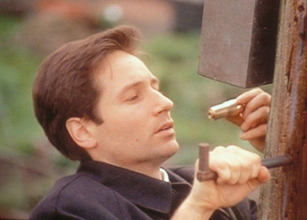 In einem Verteilerkasten entdeckt Mulder (David Duchovny) einen Kabelfernsehdecoder, dessen elektronische Signale die Zuschauer zum Mörder werden la... - Bildquelle: TM +   Twentieth Century Fox Film Corporation. All Rights Reserved.