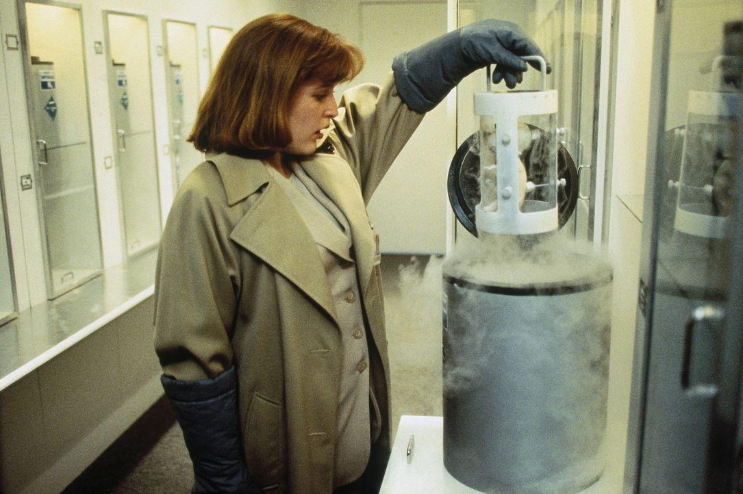 Scully (Gillian Anderson) ist entsetzt über die seltsamen Kreaturen, die in dem geheimen Versuchslabor gehalten werden ... - Bildquelle: TM +   Twentieth Century Fox Film Corporation. All Rights Reserved.