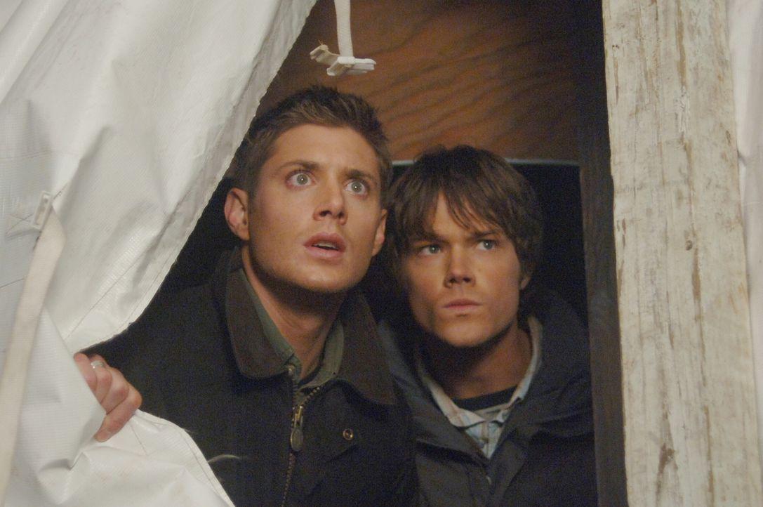 Versuchen unschuldige Menschen vor dem Tod zu retten: Sam (Jared Padalecki, r.) und Dean (Jensen Ackles, l.) ... - Bildquelle: Warner Bros. Television