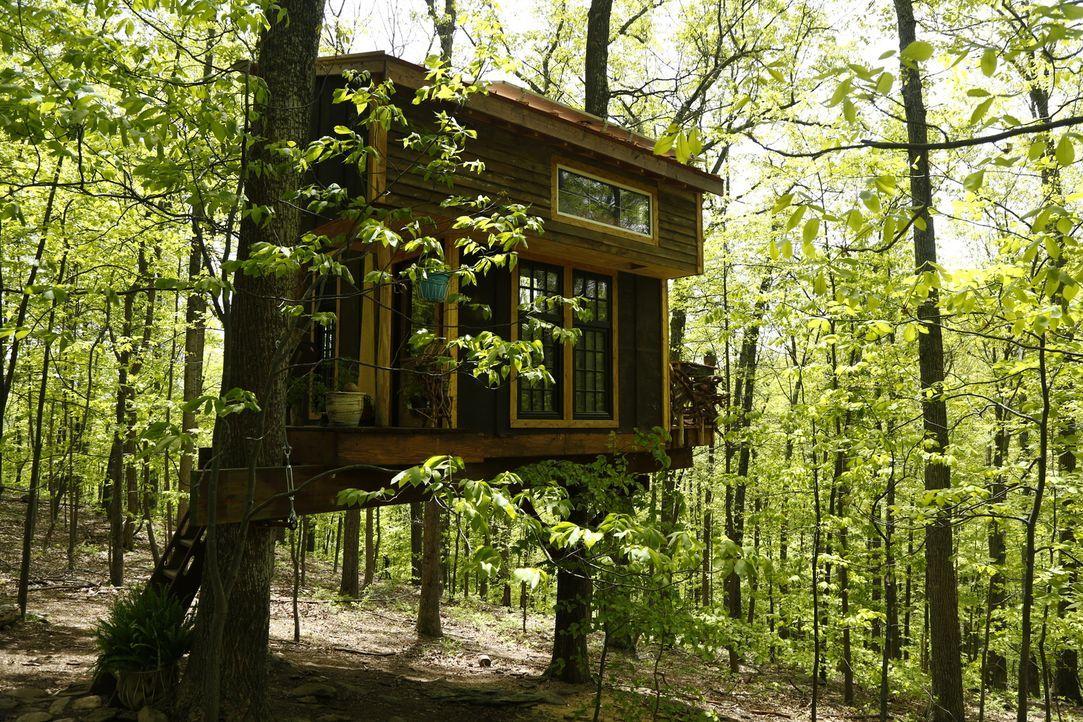 Hoch oben in den roten Eichen Virginias nahe des Appalachian Trails gilt es für die Treehouse Guys dieses Mal, eine echte Baum-Apotheke zu designen... - Bildquelle: 2016,DIY Network/Scripps Networks, LLC. All Rights Reserved