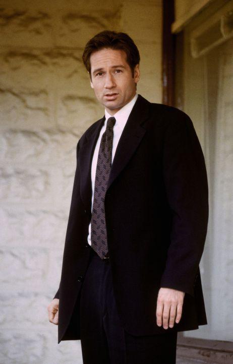 Fox Mulder (David Duchovny) - Bildquelle: 1998 Twentieth Century Fox Film Corporation.  All rights reserved.