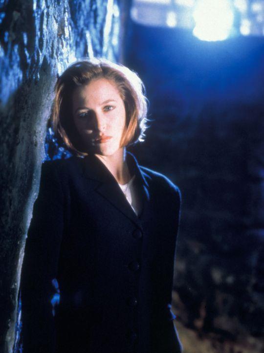 (5. Staffel) - FBI-Agentin Dana Scully (Gillian Anderson) gerät mehr und mehr in den Sog von Vorgängen, die auf natürliche Weise nicht zu erklären s... - Bildquelle: TM +   2000 Twentieth Century Fox Film Corporation. All Rights Reserved.