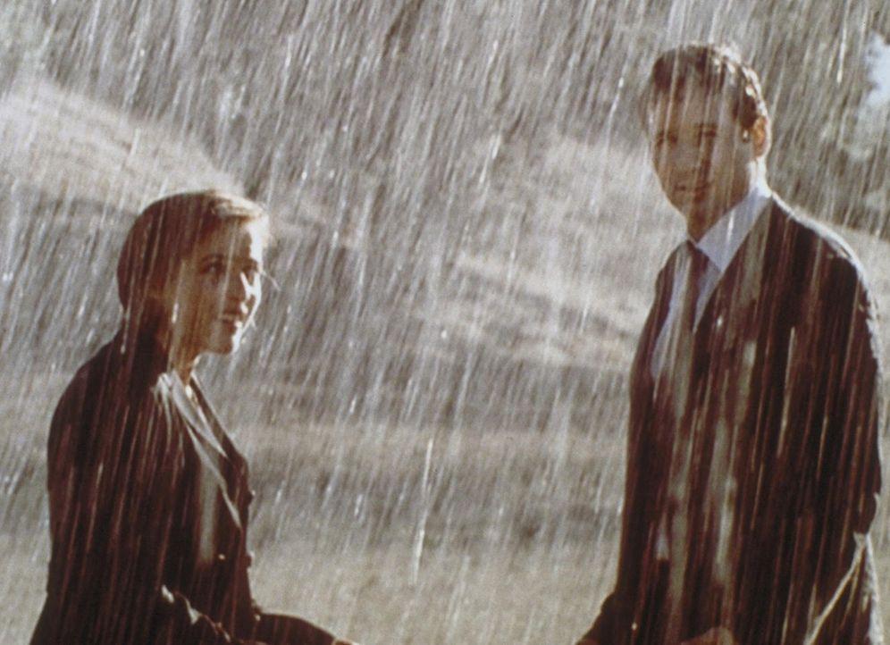 """Scully (Gillian Anderson, l.) und Mulder (David Duchovny) bezweifeln, dass Menschen das Wetter beeinflussen können. Doch ein """"Regenmacher"""" belehrt e... - Bildquelle: TM +   2000 Twentieth Century Fox Film Corporation. All Rights Reserved."""