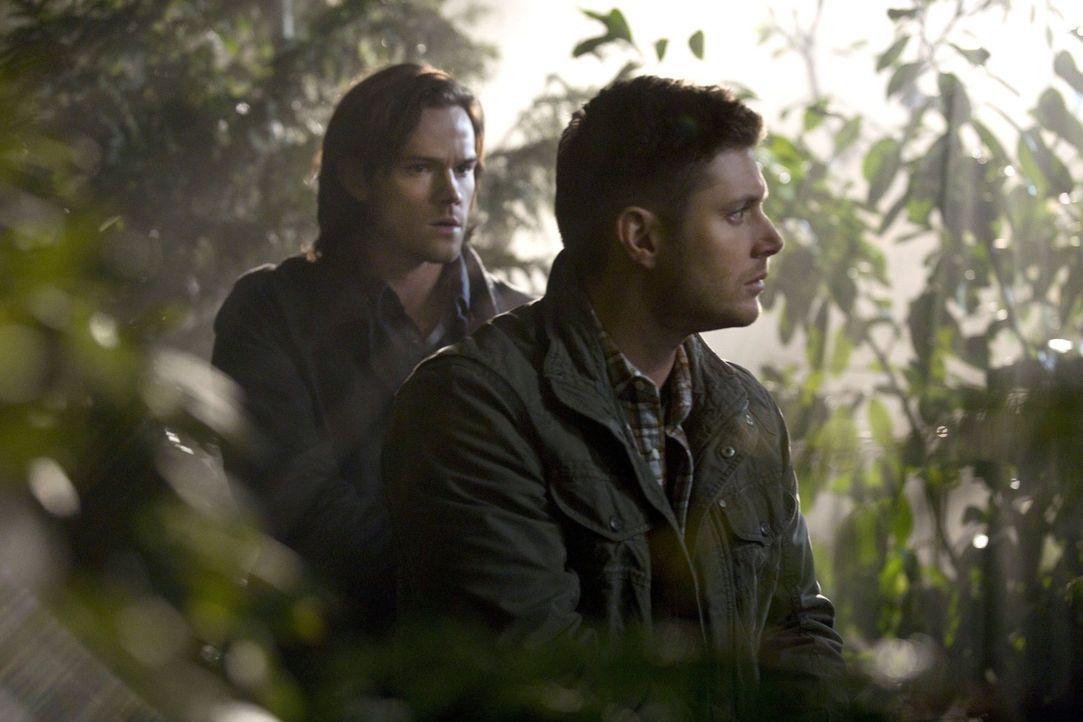 Noch ahnen Sam (Jared Padalecki, l.) und Dean (Jensen Ackles, r.) nicht, wer der angebliche Mann ohne Gesicht tatsächlich ist ... - Bildquelle: 2013 Warner Brothers