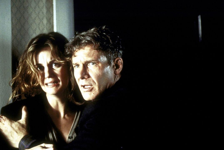 Das friedliche Familienleben vom Tom (Harrison Ford, r.) und Sheila O'Meara (Margaret Colin, l.) wird jäh zerstört, als sie den irischen Terroristen... - Bildquelle: Columbia TriStar