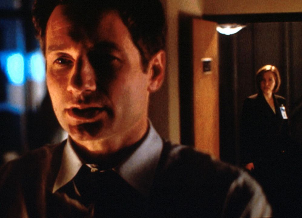 Mulder (David Duchovny, l.) und Scully (Gillian Anderson, r.) untersuchen eine Mordserie in Kalifornien, für die eine eigentlich ausgestorbene Hunde... - Bildquelle: TM +   2000 Twentieth Century Fox Film Corporation. All Rights Reserved.
