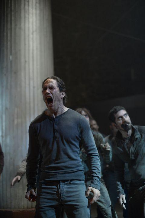 Erkennt Julia, welche Bedeutung Peters (Neil Napier) Worte aus ihrer Halluzination haben? - Bildquelle: 2014 Sony Pictures Television Inc. All Rights Reserved.