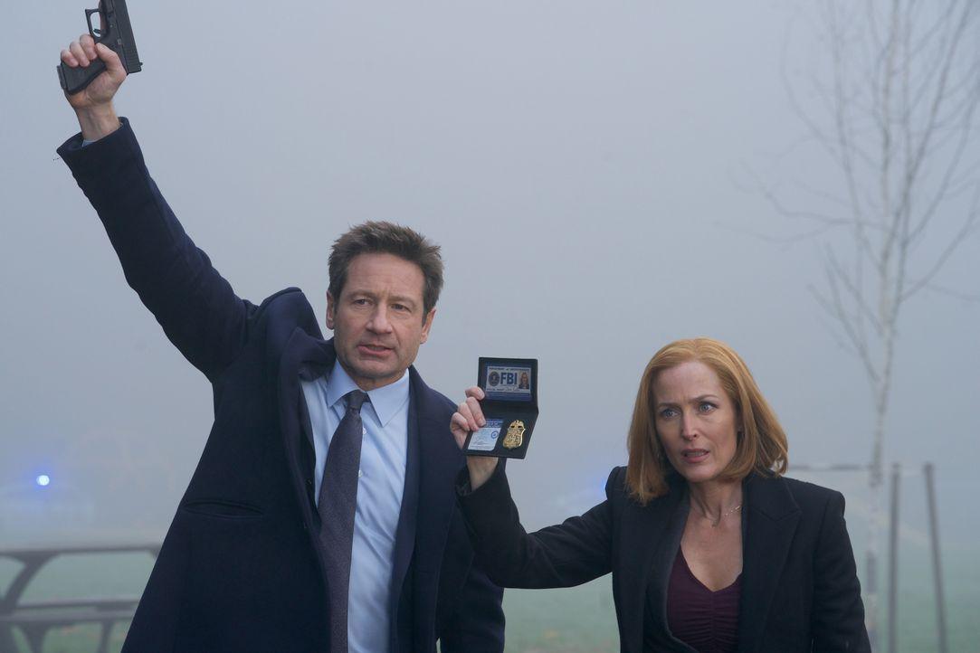Mulder (David Duchovny, l.) und Scully (Gillian Anderson, r.) müssen im Todesfall eines kleinen Jungen ermitteln, denn im Gegensatz zu der örtlichen... - Bildquelle: Shane Harvey 2018 Fox and its related entities. All rights reserved. / Shane Harvey