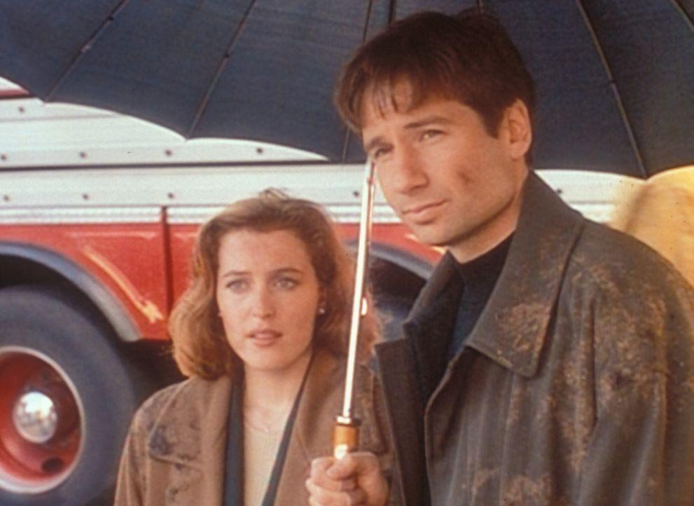 Scully (Gillian Anderson, l.) und Mulder (David Duchovny, r.) sind nach der  Explosion einer Forschungsstätte für alternative Treibstoffe überzeugt,... - Bildquelle: TM +   2000 Twentieth Century Fox Film Corporation. All Rights Reserved.