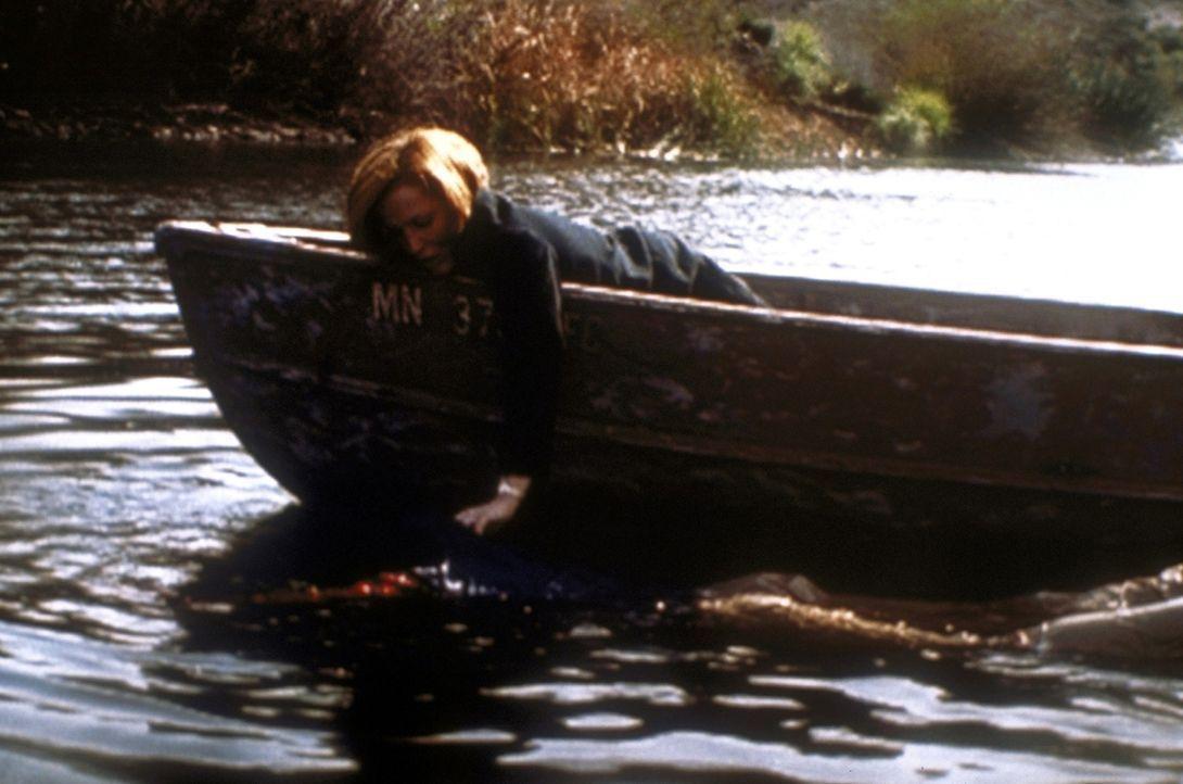 Scully (Gillian Anderson, r.) versucht, ihren Kontaktmann Cobra (Timothy Landfield, l.) aus dem Wasser zu fischen. - Bildquelle: TM +   2000 Twentieth Century Fox Film Corporation. All Rights Reserved.