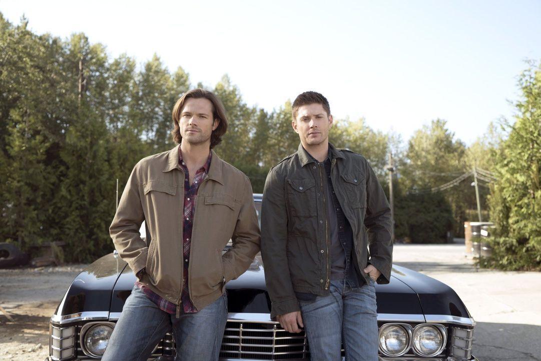 Eine Reihe von Morden in einem kleinen Bed and Breakfast ruft Sam (Jared Padalecki, l.) und Dean (Jensen Ackles, r.) auf den Plan, die schon bald me... - Bildquelle: 2014 Warner Brothers