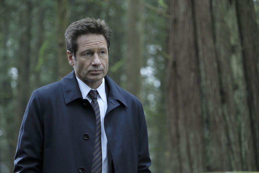 Als Mulder (David Duchovny) und Scully einem Hinweis auf Skinners Verbleib nachgehen, treffen sie in Kentucky auf einen Obdachlosen, der ihnen ständ... - Bildquelle: Eric Millner 2018 Fox and its related entities. All rights reserved. / Eric Millner