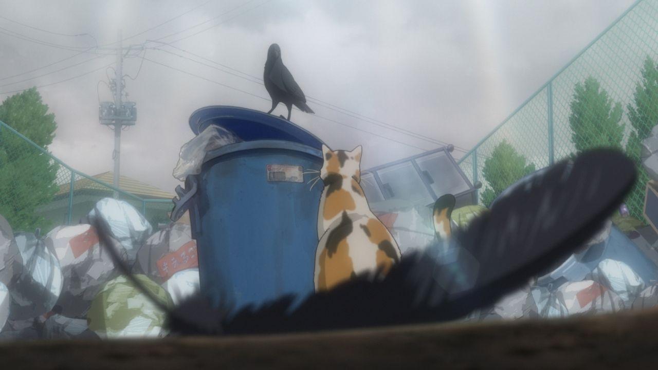 """Wiedersehen von Katze und Krähe - Bildquelle: H.Furudate / Shueisha,""""Haikyu!!?Project,MBS"""