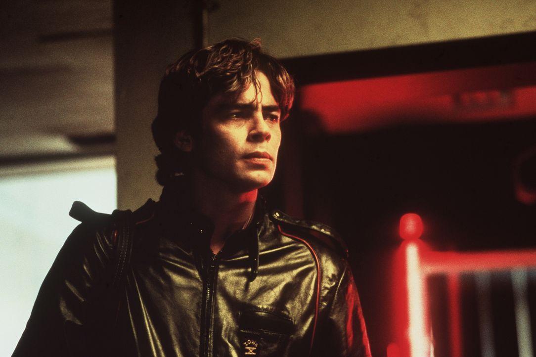 Der sympathische Profi-Autoknacker Vincent Roche (Benicio Del Toro) macht eine aufregende Entdeckung: Im Kofferraum des geklauten BMWs liegt die Toc... - Bildquelle: Columbia Pictures