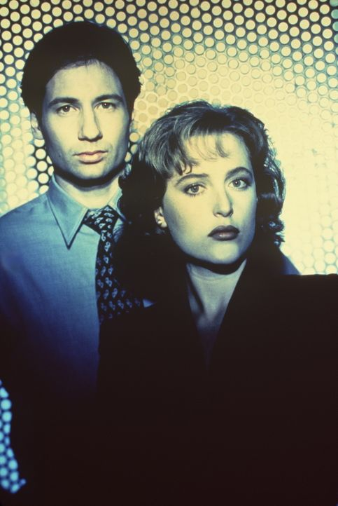 (1. Staffel) - Die FBI-Agenten Fox Mulder (David Duchovny, l.) und Dana Scully (Gillian Anderson, r.) erforschen ungewöhnliche Phänomene. - Bildquelle: TM +   Twentieth Century Fox Film Corporation. All Rights Reserved.