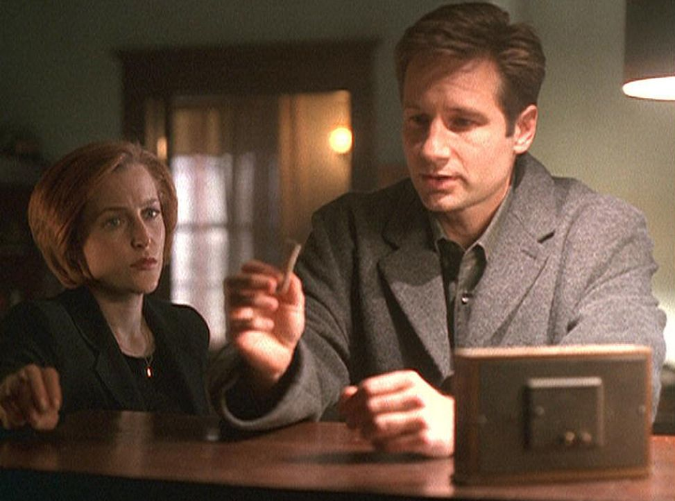 Scully (Gillian Anderson, l.) und Mulder (David Duchovny, r.) untersuchen den Tod eines jungen Mannes, der an unzähligen Schlangenbissen gestorben i... - Bildquelle: TM +   2000 Twentieth Century Fox Film Corporation. All Rights Reserved.