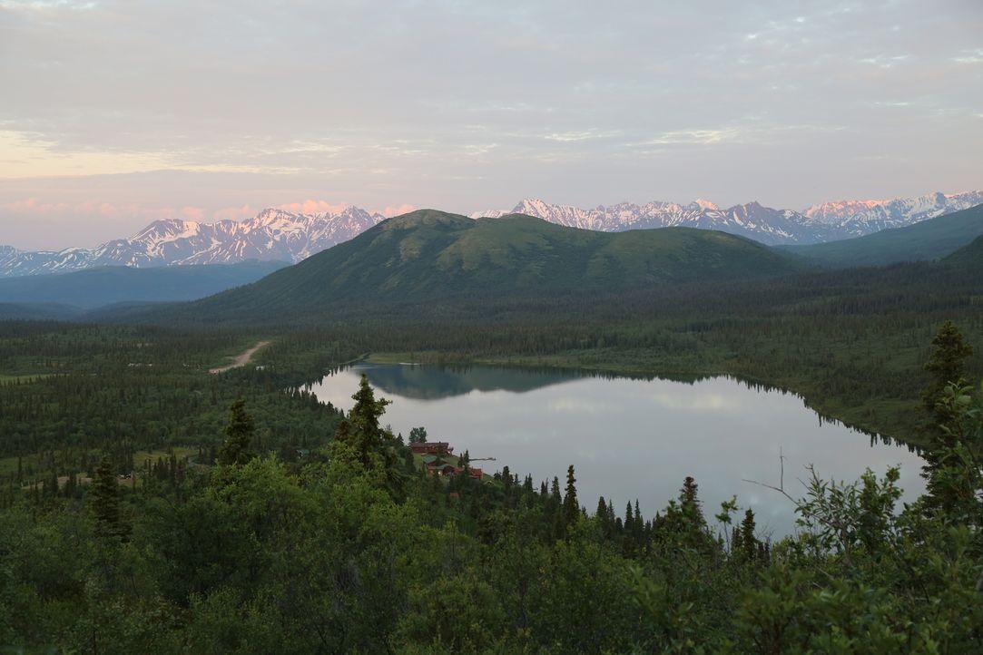 Ausgerechnet in der Wildnis Alaskas wollen die Perrinsbrüder eine Jagdhütte aus Holz bauen. Werden sie es schaffen, das Haus rechtzeitig vor der bev... - Bildquelle: Copyright Notice :  2014,DIY Network/Scripps Networks, LLC. All Rights Reserved