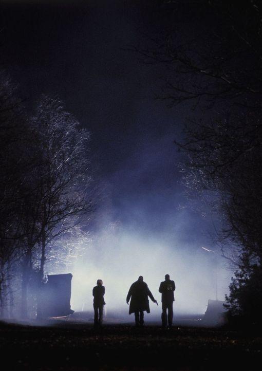Werden sie lebend von der Insel kommen? Gabe (LL Cool J, M.), Lucas (Jonny Lee Miller, r.) und Sarah (Kathryn Morris, l.) ... - Bildquelle: Tobis Film