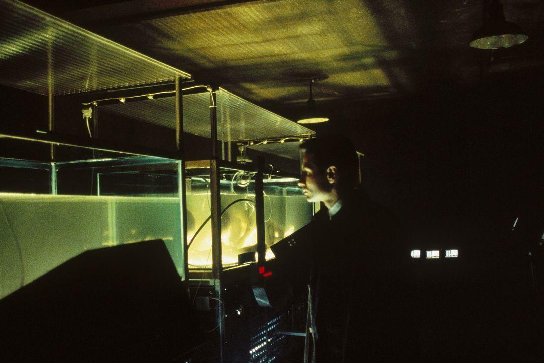 Nachdem Mulder (David Duchovny) von den X-Akten ausgeschlossen wird, ermittelt er auf eigene Faust weiter ... - Bildquelle: TM +   Twentieth Century Fox Film Corporation. All Rights Reserved.