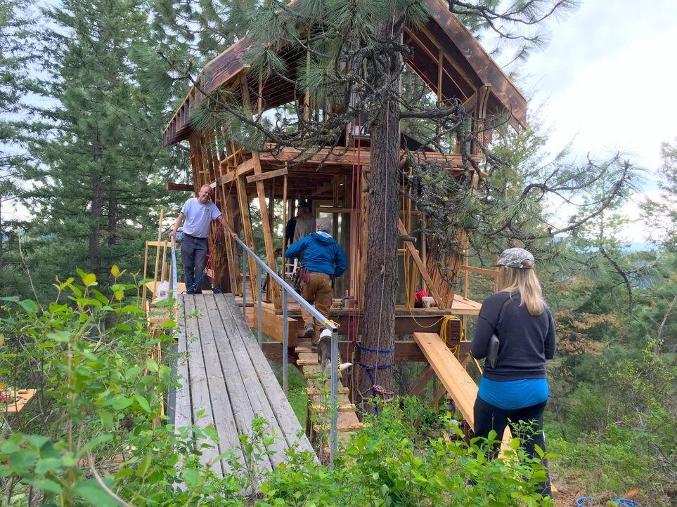 Wie werden die Globetrotter Lynn und Andrew auf ihr außergewöhnliches Baumhaus mitten in der Wildnis von Idaho reagieren? - Bildquelle: 2016,DIY Network/Scripps Networks, LLC. All Rights Reserved
