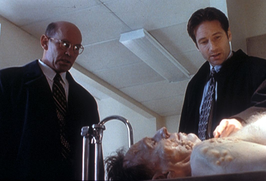 Mulder (David Duchovny, r.) zeigt Skinner (Mitch Pileggi, l.) die Leiche eines Entomologen (Allan Gray, liegend), der durch unzählige Stiche von Bie... - Bildquelle: TM +   2000 Twentieth Century Fox Film Corporation. All Rights Reserved.