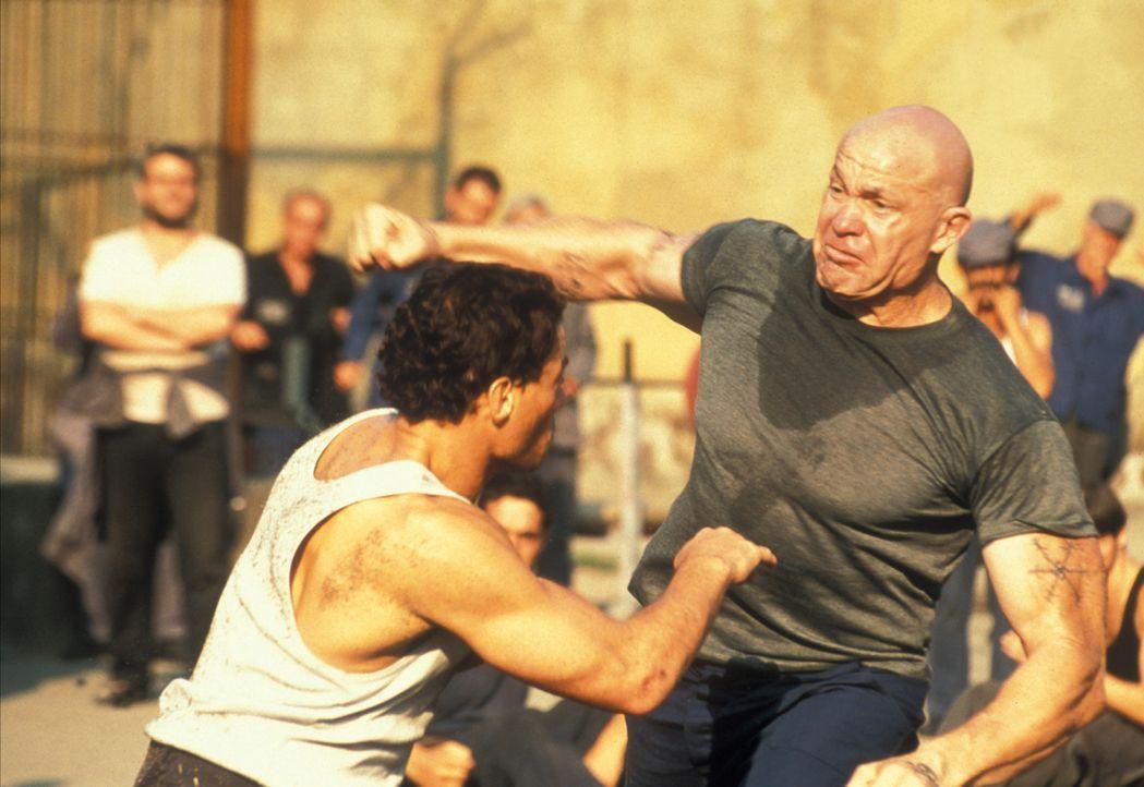 Bis einer der Kämpfer tot am Boden liegt: Kyle (Jean-Claude Van Damme, l.) ... - Bildquelle: NU IMAGE