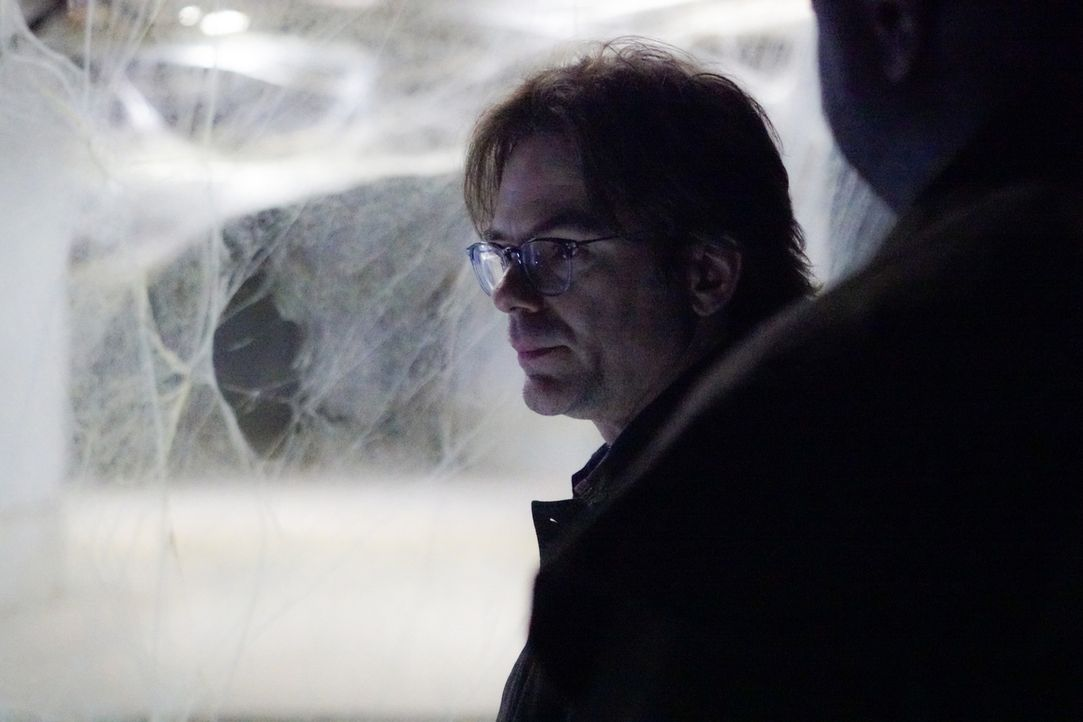 Mitch (Billy Burke) und sein Team machen einen grausamen Fund in Portugal: Killer-Spinnen... Reicht sein Gegengift aus? - Bildquelle: Shane Harvey 2016 CBS Broadcasting Inc. All Rights Reserved.
