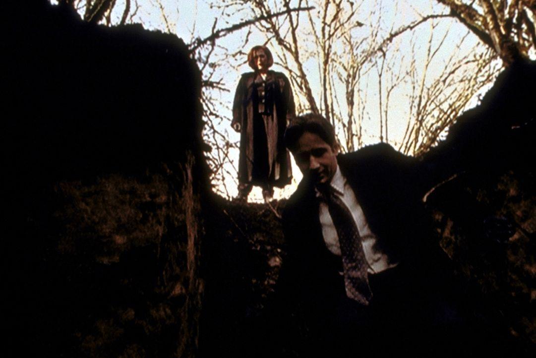 Mulder (David Duchovny, r.) und Scully (Gillian Anderson, l.) untersuchen ein Schlammloch, das angeblich gegraben wurde, um einen Mann darin versink... - Bildquelle: TM +   2000 Twentieth Century Fox Film Corporation. All Rights Reserved.