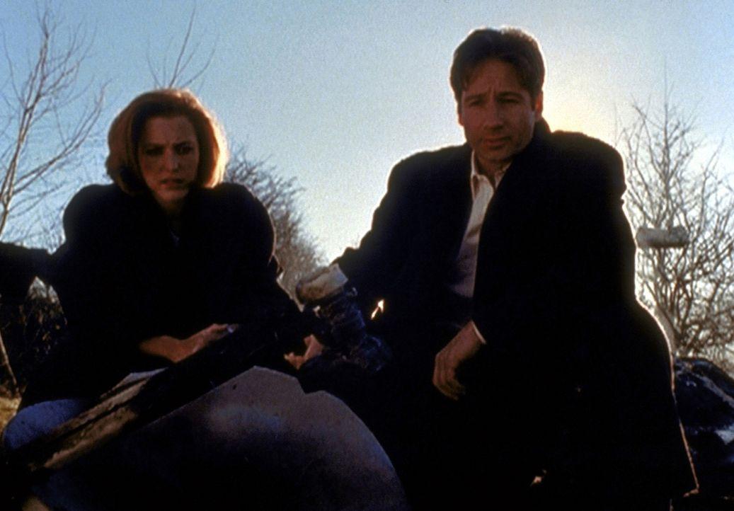 Scully (Gillian Anderson, l.) und Mulder (David Duchovny, r.) betrachten die Trümmer eines Hauses, das offenbar von einer Waffenplattform aus dem We... - Bildquelle: TM +   2000 Twentieth Century Fox Film Corporation. All Rights Reserved.