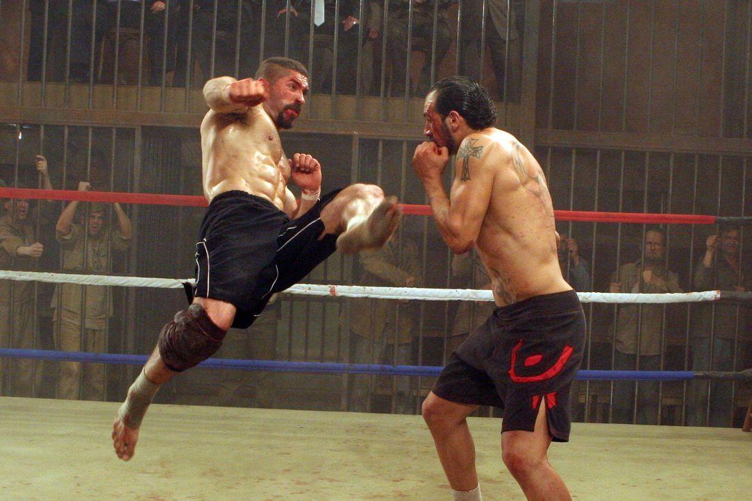 Es entbrennt ein Kampf auf Leben und Tod zwischen Boyka (Scott Adkins, l.) und Dolor (Marko Zaror, r.) ... - Bildquelle: Nu Image